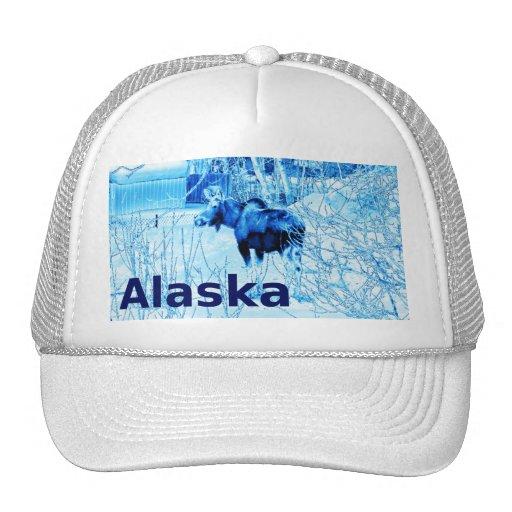 Urban Moose Trucker Hat