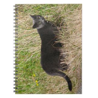Urban Panther Notebooks