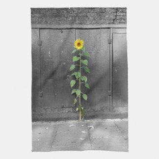 Urban Sunflower Kitchen Towel