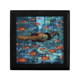 Urban swimmers jewelry box