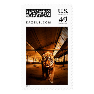 Urban tiger postage