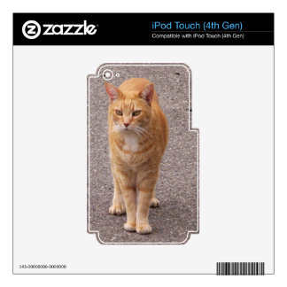 Urban Tiger iPod Touch 4G Decals