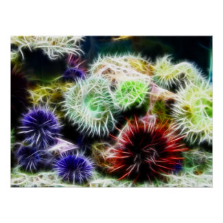 Urchin Bed Poster