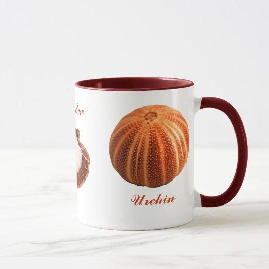 Urchin, Lions Paw, Murex Ramous Mug