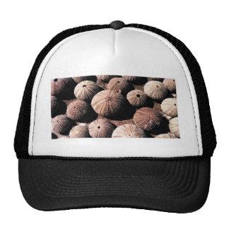 Urchins Trucker Hat