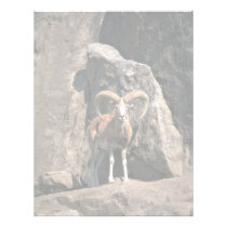 Urial sheep letterhead