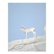 Urial Sheep Letterhead
