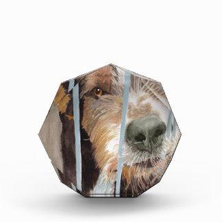 Urmel the Rescue Dog Acrylic Award