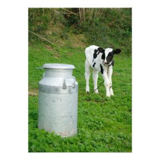Urna del becerro y de la leche comunicados personalizados