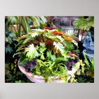 Urna del jardín - un cuenco de ensalada de plantas impresiones