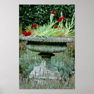 Urna plantada con las flores del clavel impresiones