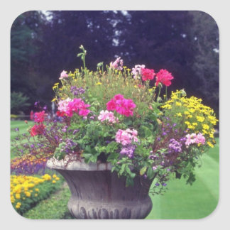 Urna y flores rosadas flores de Victoria Pegatinas Cuadradas