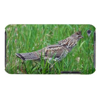 Urogallo salvaje, Quali, pájaro de tierra del Carcasa Para iPod