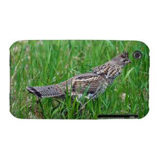 Urogallo salvaje, Quali, pájaro de tierra del Funda Para iPhone 3 De Case-Mate