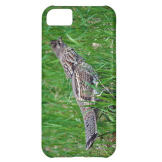 Urogallo salvaje, Quali, pájaro de tierra del Funda Para iPhone 5C