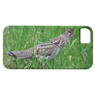 Urogallo salvaje, Quali, pájaro de tierra del Funda Para iPhone SE/5/5s
