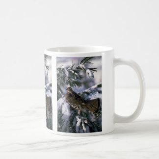 Urogallo superado encaramado en un árbol nevoso tazas de café