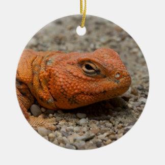 Uromastyx geyri ceramic ornament