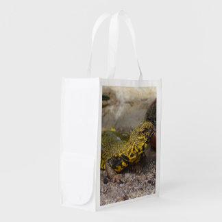 Uromastyx geyri reusable grocery bag