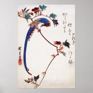 Urraca azul en rama del arce por Hiroshige Posters