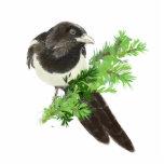 Urraca de la acuarela, pájaro del jardín escultura fotográfica