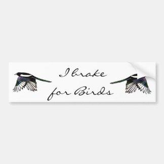 Urraca - pájaro de la acuarela pegatina de parachoque