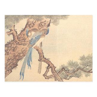 Urracas de Kitao Masayoshi en árbol de pino Tarjetas Postales