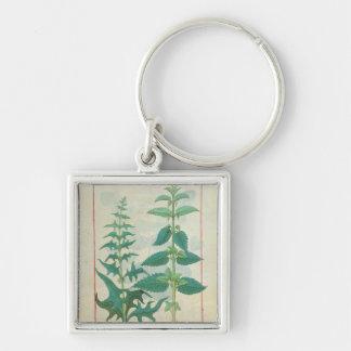 Urticaceae Key Chains