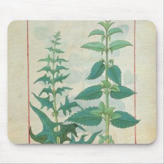Urticaceae Mouse Pad