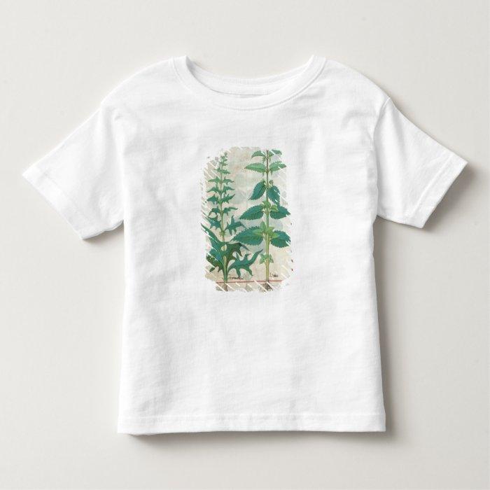 Urticaceae Toddler T-shirt