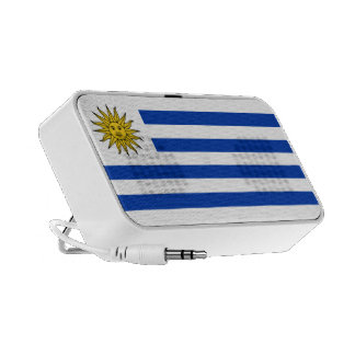 Uruguay Flag Doodle Speaker