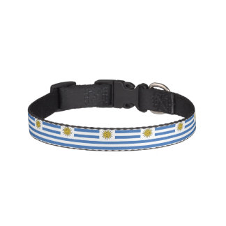 Uruguay Flag Pet Collar