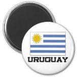 Uruguay Flag Refrigerator Magnets