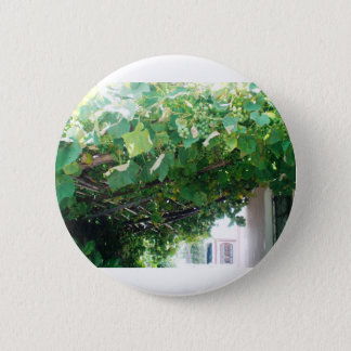 Uruguay Grape Vine Pinback Button