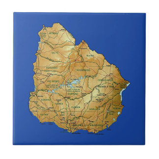 Uruguay Map Tile