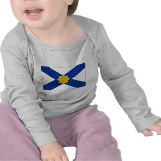 Uruguay Naval Jack Tee Shirts