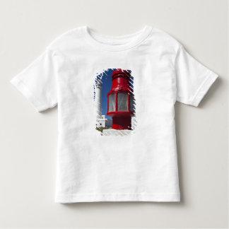 Uruguay, Rocha Department, La Paloma. Cabo Santa Toddler T-shirt