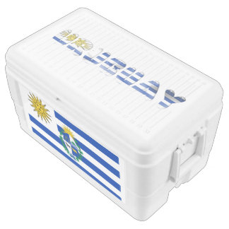 Uruguayan flag ice chest