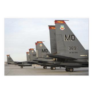 US Air Force F-15E Strike Eagles Art Photo