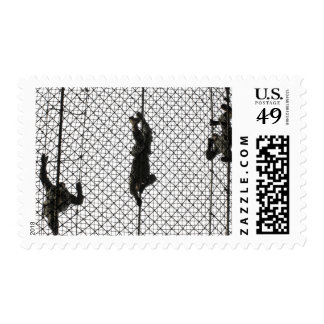 US Army recruits completing an obstacle Postage Stamp