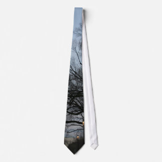 US Capitol at winter dusk photo Neck Tie