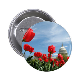 US Capitol Building Spring photo Button