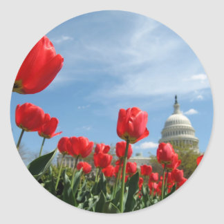 US Capitol Building Spring photo Classic Round Sticker