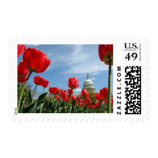 US Capitol Building Spring photo Postage Stamps