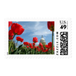 US Capitol Building Spring photo Stamp