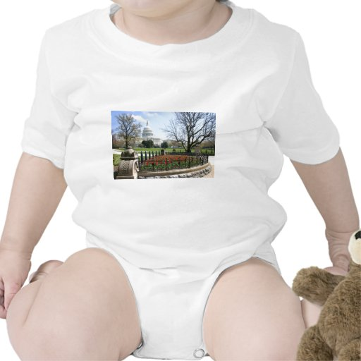 US Capitol building spring Shirts