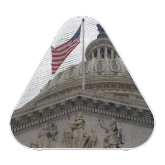 US Capitol Building with American Flag - East Speaker
