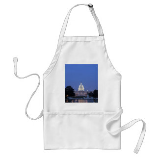 US Capitol night picture Adult Apron
