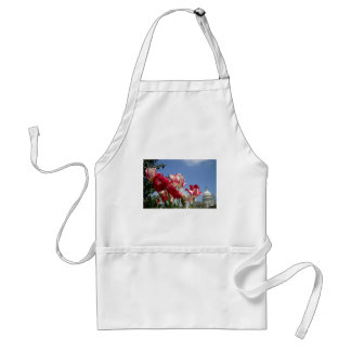 US Capitol spring Adult Apron