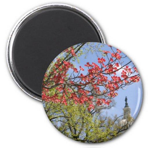 US Capitol spring flower Fridge Magnet